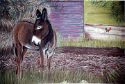 Southern Pastels - South Georgia Mule by Jan Amiss