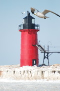 Winter Prints Framed Prints - South Haven Pierhead Light and Gull Framed Print by Michael Peychich