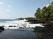 Halle Treanor - South Kona Shore