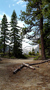 Captivating Photos - South Lake Tahoe Mountain Trail by LeeAnn McLaneGoetz McLaneGoetzStudioLLCcom
