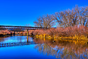 Bare Trees Metal Prints - South Platte Bridge Reflected Metal Print by David Patterson