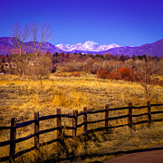 Snow Prints - South Platte Park Fenceline  Print by David Patterson