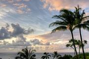 South Seas Sunset Print by John  Greaves