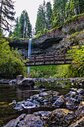 State Flowers Posters - South Silver Falls with Bridge Poster by Darcy Michaelchuk