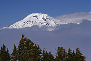 Deschutes Prints - South Sister Mountain In The Cascade Print by Gordon Wiltsie