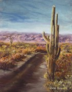 Jack Skinner Metal Prints - Southern Arizona Metal Print by Jack Skinner