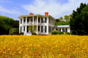 Southern Homes Prints - Southern Charm Print by Karen Wiles