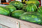 Watermelons Photos - Southern Delight by Jan Amiss Photography