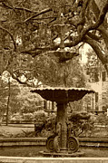 Birdbath Framed Prints - Southern Fountain II in sepia Framed Print by Suzanne Gaff
