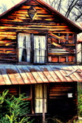 Abandoned Houses Prints - Southern Homestead Print by Emily Stauring
