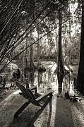 Sepia Acrylic Prints - Southern Living by Dustin K Ryan