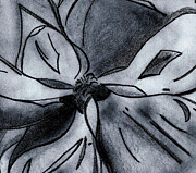 Alabama Drawings Prints - Southern Magnolia detail Print by Elizabeth Briggs