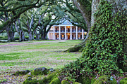 Southern Manor Home Print by Jeremy Woodhouse