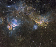Molecular Clouds Prints - Southern Seagull Nebula Print by Don Goldman