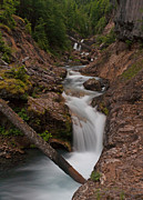 Creek Prints - Southwest Canyon Print by Mike Reid