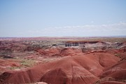 Painted Hall Metal Prints - Southwest Painted Desert Metal Print by Judy Hall-Folde
