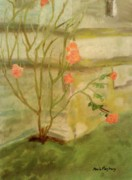 Southwick Art - Southwick Hall Rose by Paula Maybery