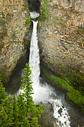 Falling Prints - Spahats Falls waterfall in Wells Gray Provincial Park Print by Elena Elisseeva