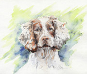 Lazy Dog Paintings - Spaniel by Roger Bonnick