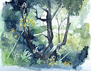 Stephanie Aarons Painting Posters - Spanish Olive Trees Poster by Stephanie Aarons