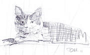 Graphite Drawings Originals - Spanky the Cat by Donald Maier