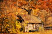 Autumn Photographs Photos - Spare Tire by Kathy Jennings