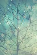 Joel Witmeyer - Sparkle of Light