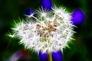 Tourist Attraction Digital Art - Sparkly Dandelion by Mariola Bitner