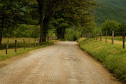 Gravel Prints - Sparks Lane - Cades Cove Print by Andrew Soundarajan