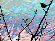 Little Bird Digital Art - Sparrow by Robert Ball