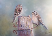 Little Birds Paintings - Sparrows by Ofelia  Arreola