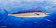 Tropical Fish Paintings - Spearfish by Carol Lynne