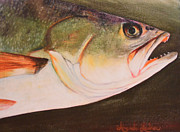 Speckled Trout Originals - Speckled Trout by Amanda Ladner