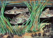 Trout Mixed Media Framed Prints - Specks In the Grass Framed Print by Robert Wolverton Jr