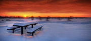 Seasonal Digital Art Metal Prints - Spectaculat winter sunset Metal Print by Jaroslaw Grudzinski
