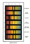 Spectrum Framed Prints - Spectra Chart, Blood Samples, 1894 Framed Print by Science Source