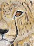 Cheetah Painting Framed Prints - Speed Framed Print by Davis Elliott