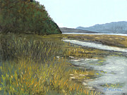 Shoreline Pastels Prints - Spencer Tidelands Print by Ginny Neece