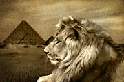 Lions Digital Art Posters - Sphinx 2 Poster by Julie L Hoddinott