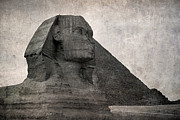 Sphinx Vintage Photo Print by Jane Rix