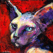 Red Prints Drawings Framed Prints - Sphynx sphinx cat painting  Framed Print by Svetlana Novikova