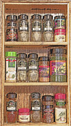 Meals Digital Art Posters - Spice Rack Still Life Poster by Steve Ohlsen