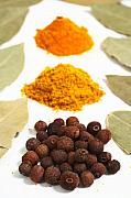 Curry Prints - Spices Print by Gaspar Avila
