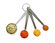 Spoons Posters - Spices in measuring spoons Poster by Elena Elisseeva