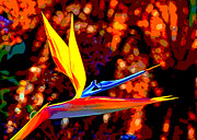Flower Pictures Prints - Spicy Bird of Paradise Print by Jim Carrell