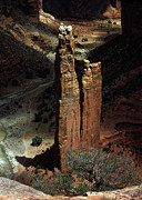 Spider Rock Framed Prints - Spider Rock Framed Print by Dewain Maney
