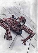 Spiderman Drawings Framed Prints - Spiderman Framed Print by James Bradley