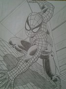 Spiderman Drawings - Spiderman by Jason Rodriguez