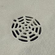 Anna Villarreal Garbis Prints - Spiderweb in the Snow Print by Anna Villarreal Garbis