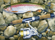 Sporting Art Posters - Spin Trout Poster by Mark Jennings